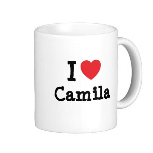 i love camila
